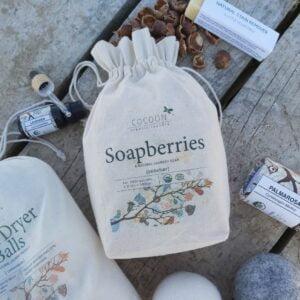 Soapberries / Sæbebær / Vaskenødder